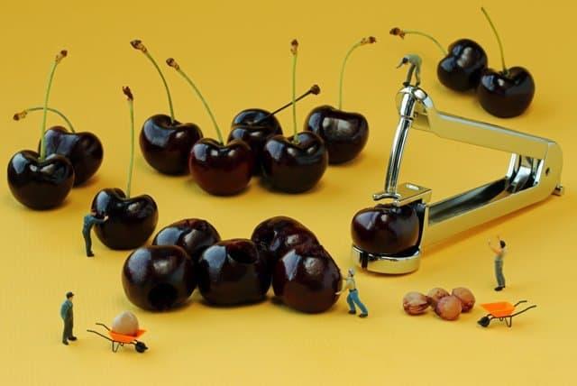 cherry-pitters
